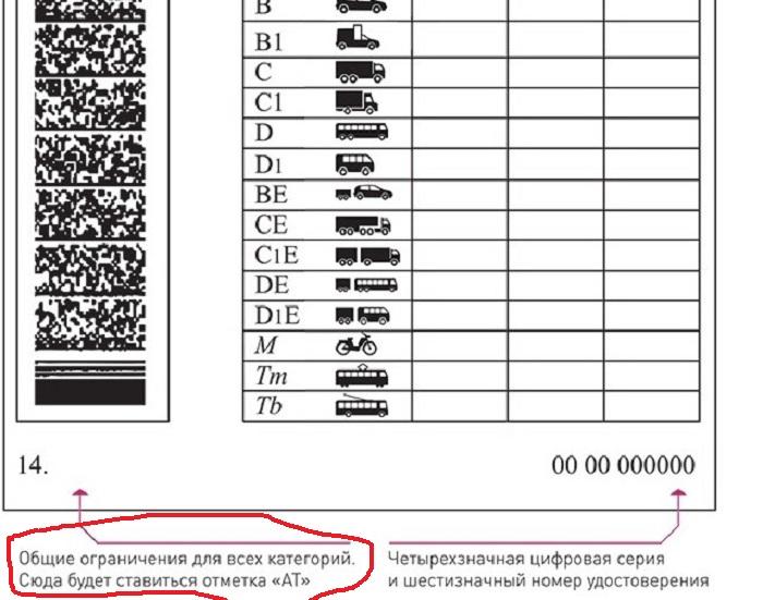 Отметка АТ ставится в пункте 14 на обратной стороне водительского удостоверения